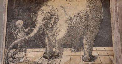 Szlakiem Słonia